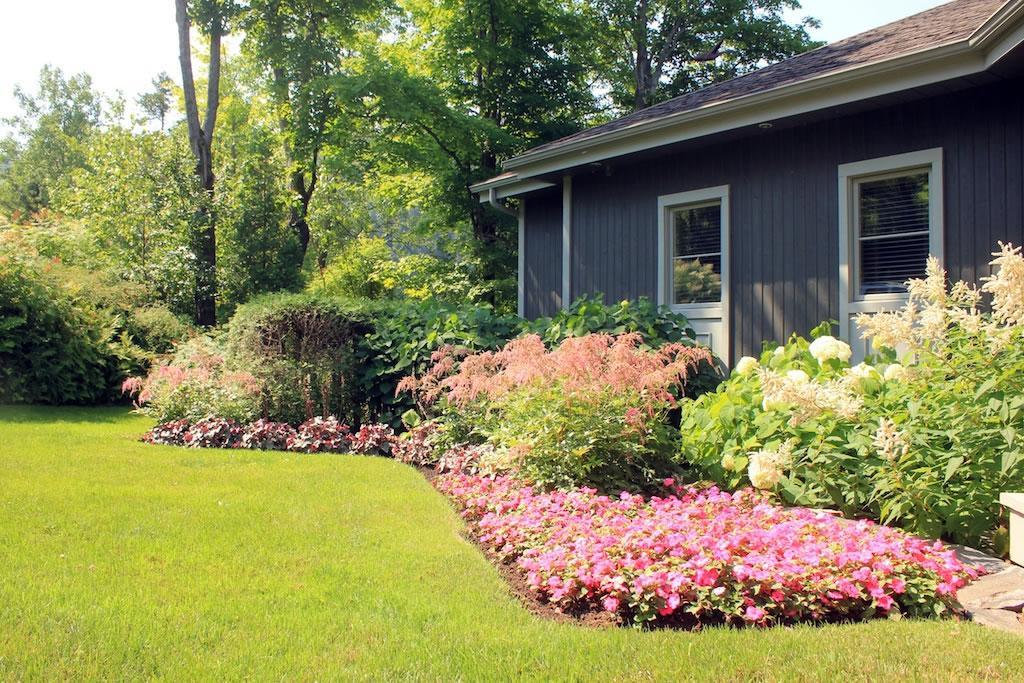 Un entretien régulier pour des fleurs en santé
